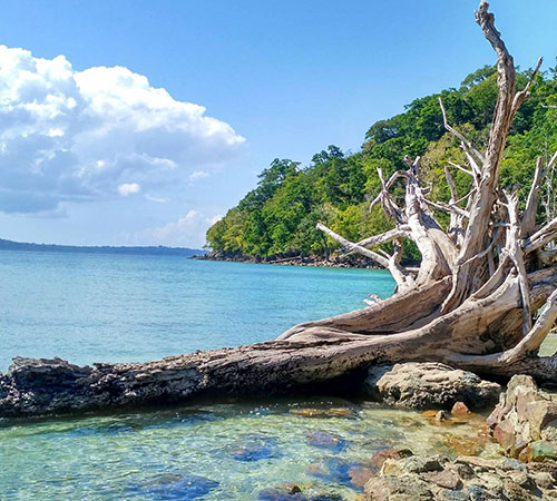 Magical Andaman